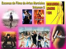 Escenas de Films de Artes Marciales Vol. 5