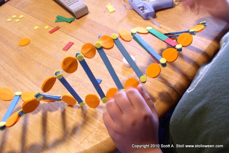 3d Model Ideas For School Project 3d Dna Model Project Ideas