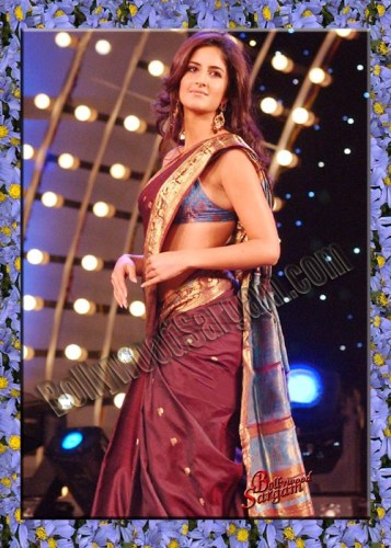Pics Of Katrina Kaif In Saree. Hot Photos of Katrina Kaif