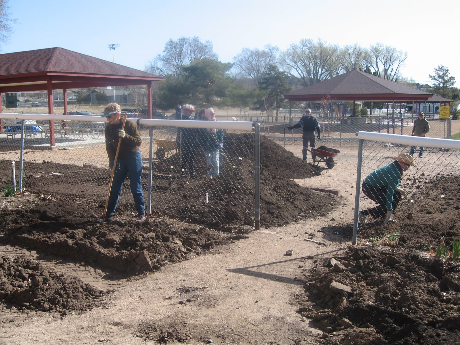 Prescott ymca child care blog something 39 s growing at the ymca for Garden ranch ymca pool