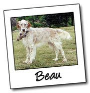 We are all friends of Beau who want to see him come home!