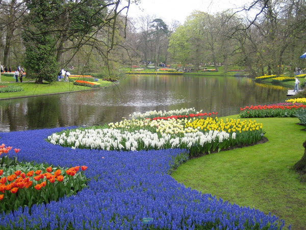 At the Keukenhof, Nl