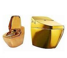OURO NA PRIVADA - cagando em ouro por 75mil reais