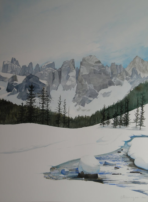 Inverno in val Venegia
