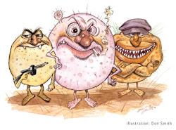 BACTERIAS: Perjudiciales para la salud.