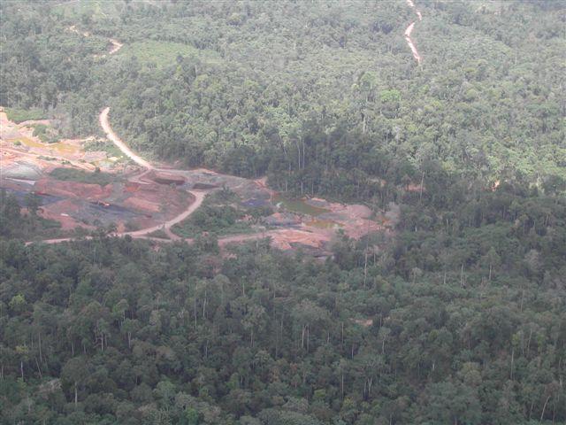Tambang batubara milik salah seorang raja tambang