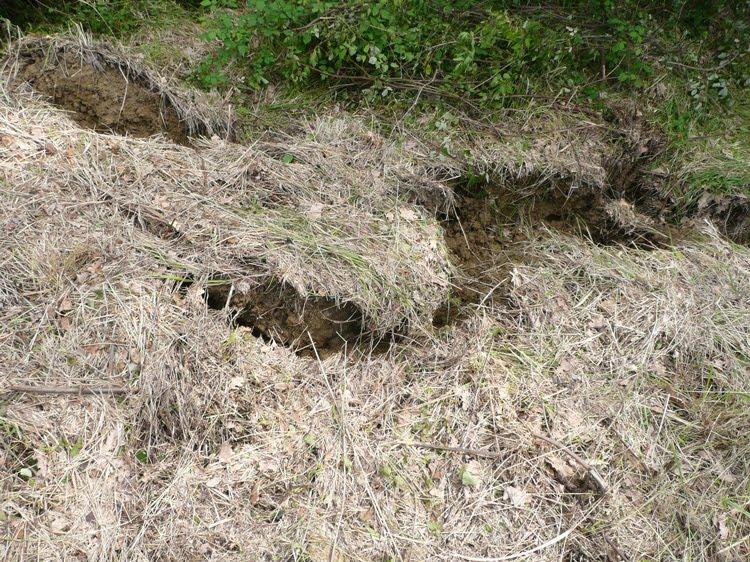 Ecomondo le frane prevenzione e risanamento for Consolidare un terreno