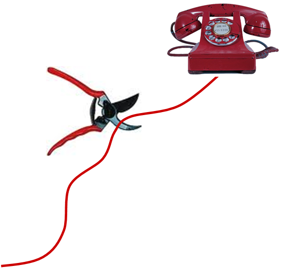 cellulare con voip: