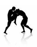 MMA picture