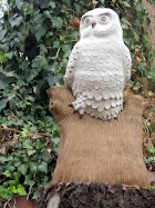 Snow Owl on Tree