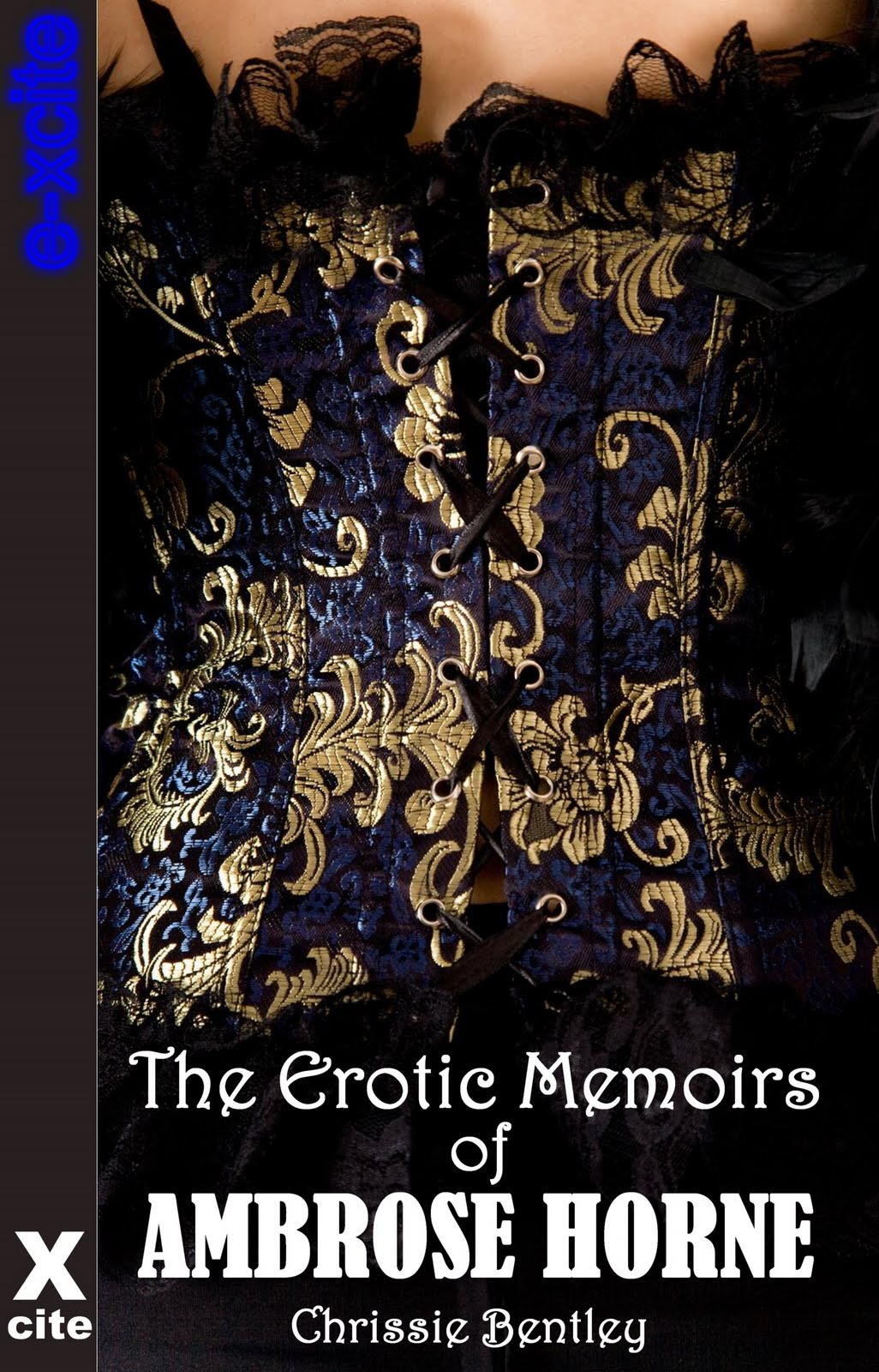 Erotic%252520Memoirs%252520low%252520res For the benefit of those readers who are new to my erotic stories ...