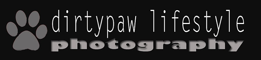 dirty paw lifestyle photography