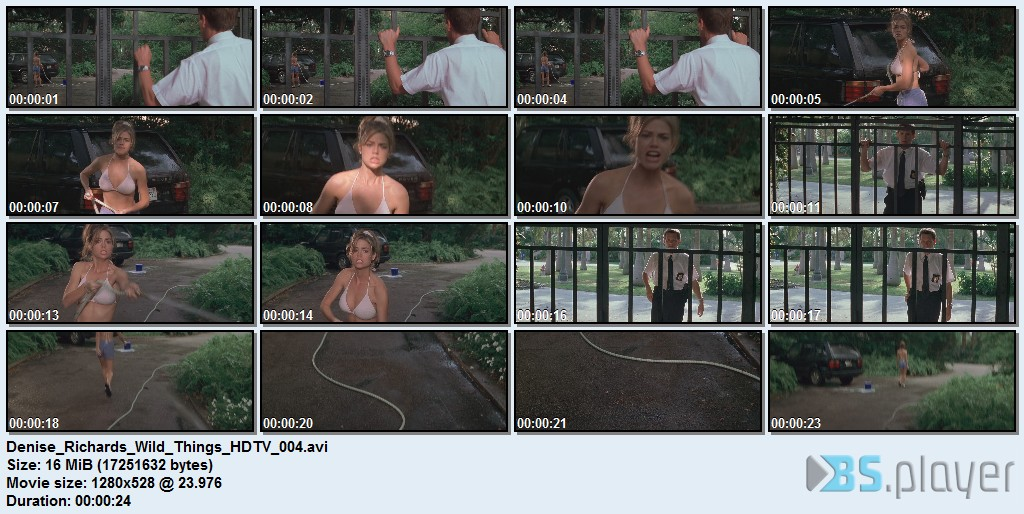 Denise Richards Wild Things HDTV 004 idx girls with slingshots lesbian sex comic, what straight girls think lesbian ...