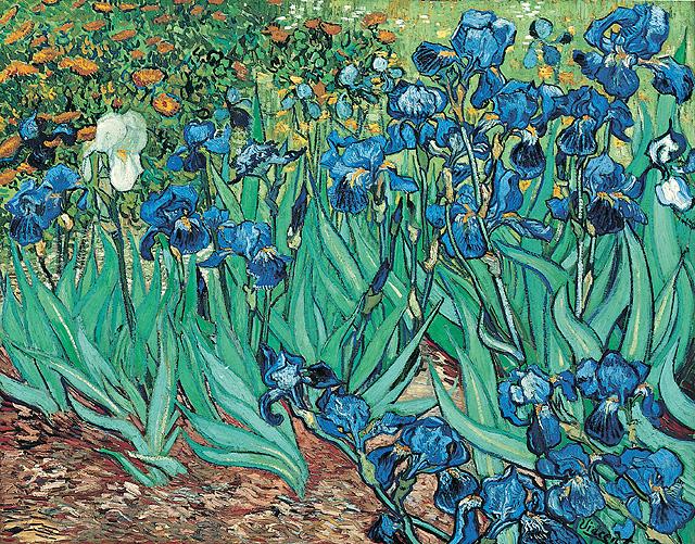 Piante di iris di Van Gogh