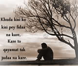Hindi Shayari Poerty