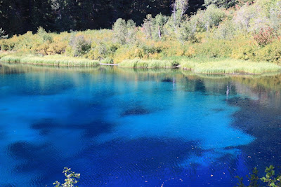 Oregon like no other clear lake the crystal clear gem for Clear lake oregon fishing