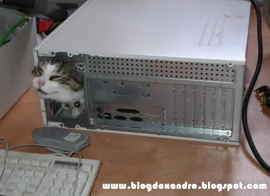 http://3.bp.blogspot.com/_X643PcxIPVk/S_QwfzoVZvI/AAAAAAAAnmA/VAfTeVrxrUU/s1600/Procurando+o+Mouse.bmp
