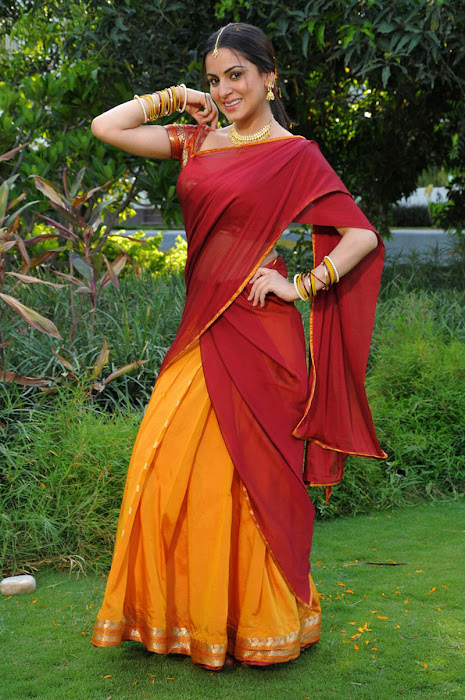 shraddha arya in half saree hot images