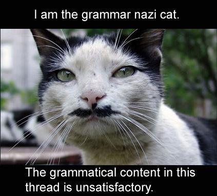 http://3.bp.blogspot.com/_X6bfacAhmsU/TJJOCteovuI/AAAAAAAABbs/qW68mbk4Y5M/s1600/Grammar-Nazi-2.jpg