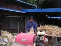 脱穀⑤真山さんの挑戦。機械に引っ張られて、結構危険!