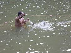 Menjaring ikan1