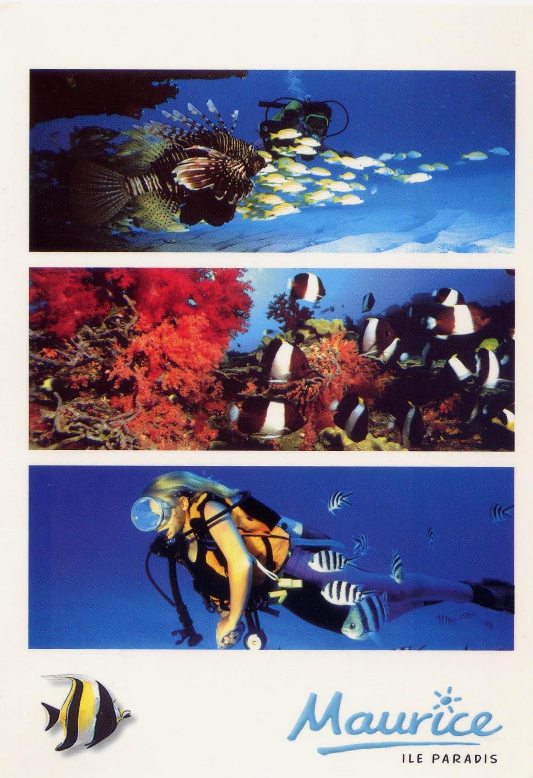 Petites fenêtres sur le Monde: Belles cartes de l'Ile Maurice
