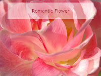 romantic rose flower ecard