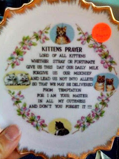 Kitten's Prayer