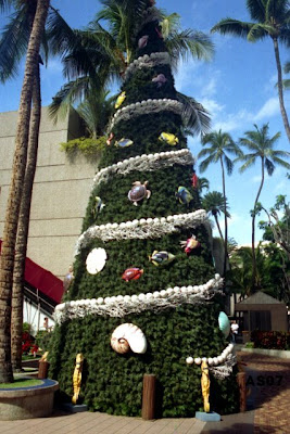 Christmas tree, Honolulu, Dec. 2001