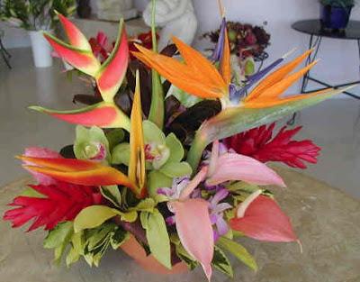 For more information visit Hawaiian Weddings at