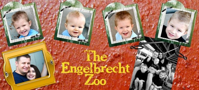 The Engelbrecht Zoo