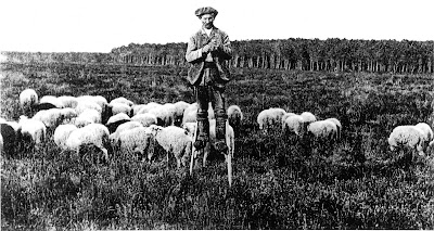 Typical shepherd in Landes