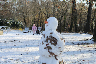 snow man in the southwest of France
