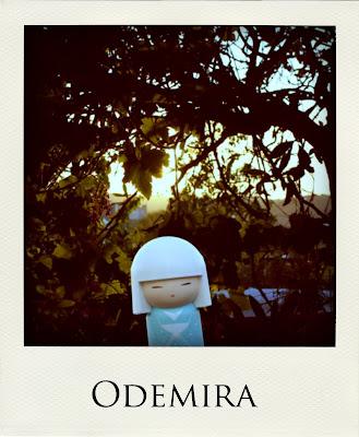Raimundinha em Odemira