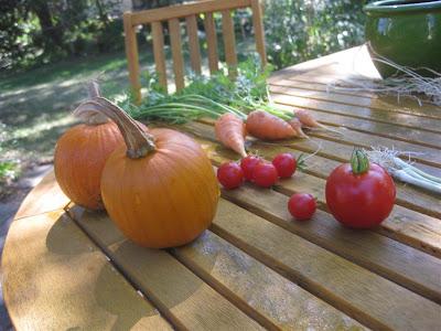 october, harvest, carrots, pumpkins, tomatoes, garden