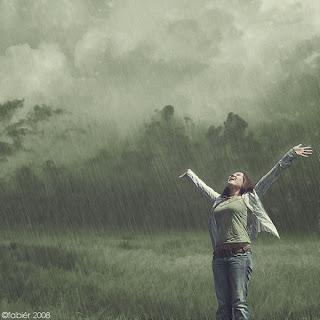 http://3.bp.blogspot.com/_XKWWaWsWEbM/TKXbsEy4C_I/AAAAAAAAAFg/klplgmtV3Z0/s320/rain_by_biblegeek.jpg