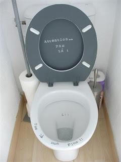 Carotte bricole customiser et decorer ses toilettes - Decorer ses toilettes ...