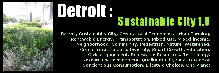 Detroit Sustainable City 1.0