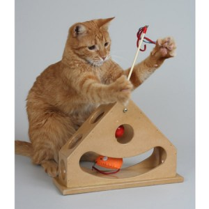 Toys For Indoor Cats 2