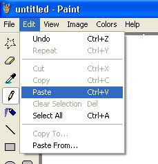 paint menu option paste