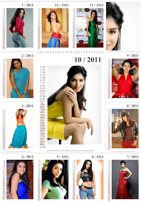 New Year 2011 Calendar, Bollywood Actress Asin Desktop Wallpapers