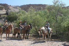Paardrijden in Las Vegas (2008)