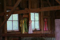 Ribbons at Barbara's beautiful farm in Fall city WA