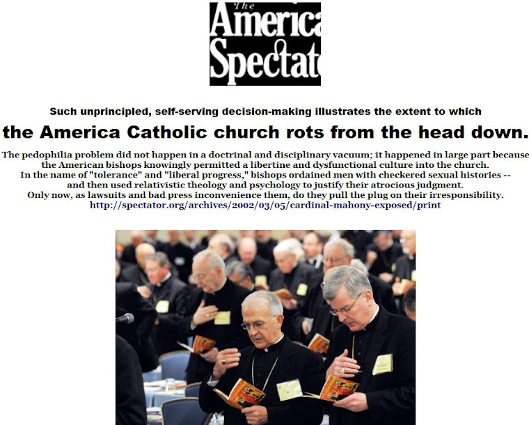 the America Catholic church rots from the head down.