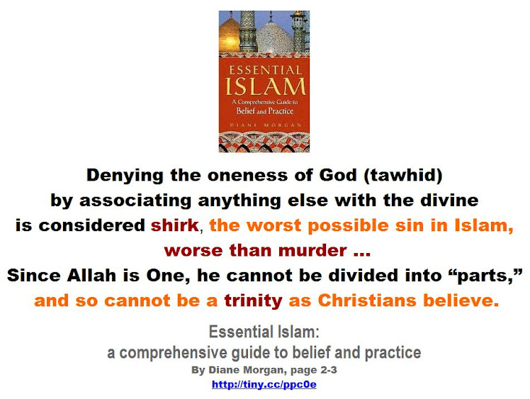 Shirk is the worst possible sin in Islam, worse than murder.