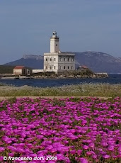 Olbia - Il faro fiorito