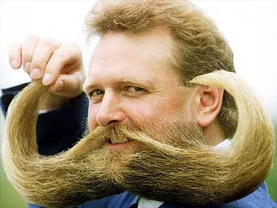 http://3.bp.blogspot.com/_XU9x8G7khv0/SgSLQtSSQEI/AAAAAAAAC_Q/8O9yyanz0ig/s400/moustache0gi.jpg