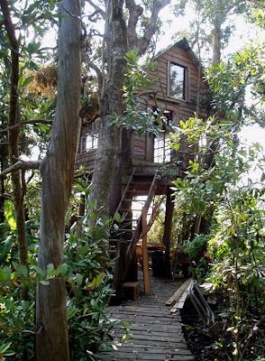 kenner treehouse
