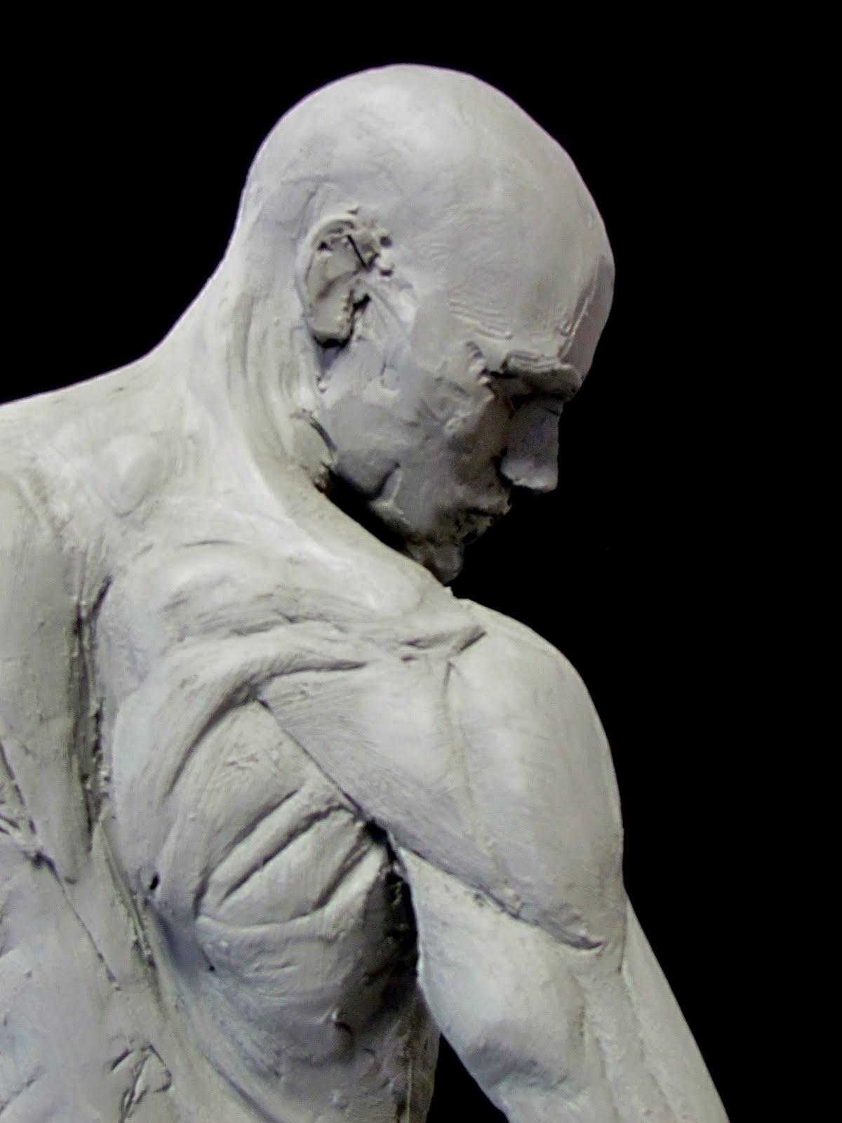 Skeletal System • Anatomy & Function - GetBodySmart