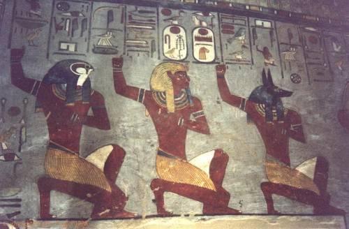 Nubian Moor Race